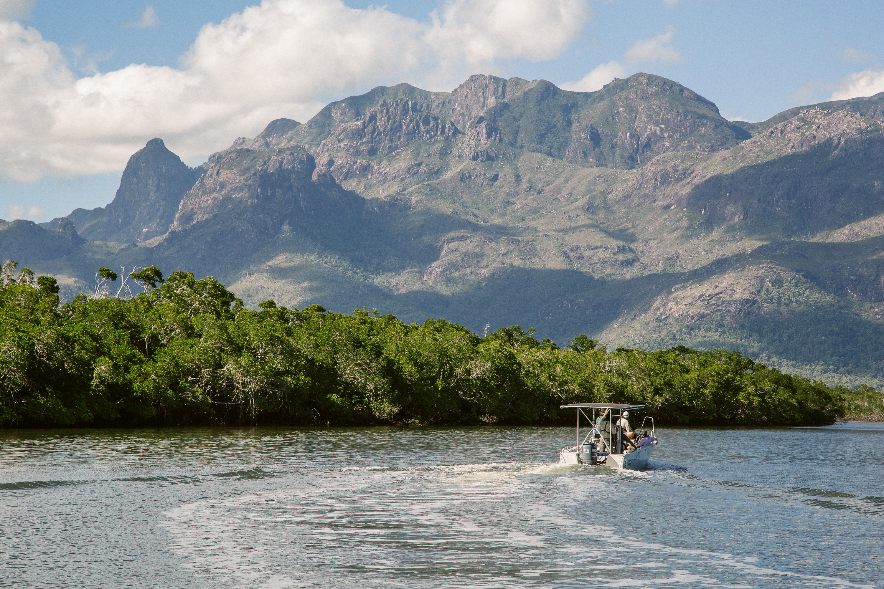 A passenger boat navigates a channel through mangrove swamps. The boat is heading for the trailhead of the Thorsborne Trail, a 40km hiking path that visits several of Hinchinbrook Island's beaches and waterfalls. Situated off the coast of North Queensland, Australia, Hinchinbrook Island is a mountainous National Park characterised by rainforest and golden beaches. Walkers typically take 4 days to complete the hike, and to protect the ecosystem of the island only 40 visitors are allowed onto the trail at any one time.